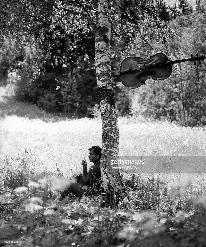 1957. Французский виолончелист Морис Баке в тени дерева