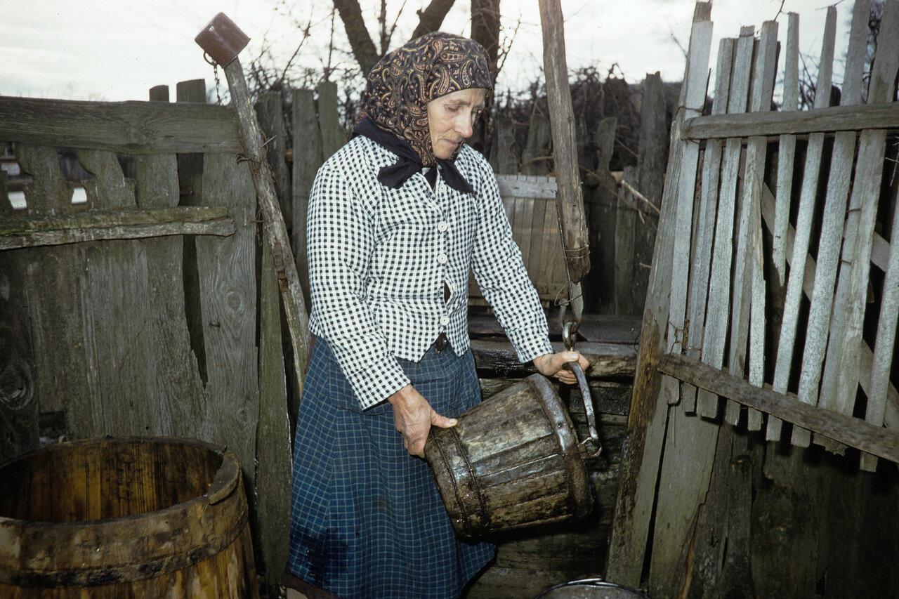Женщина с ведром во дворе своего дома