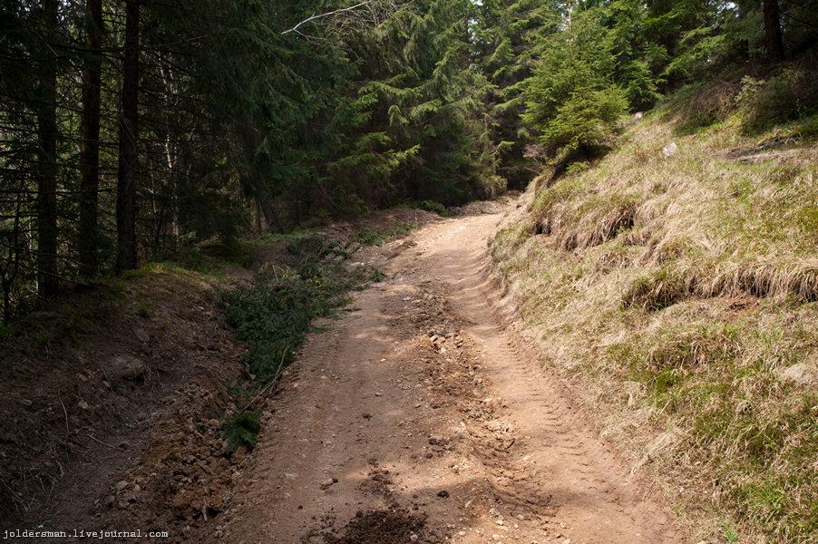 дорога в горы Карпаты