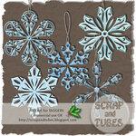 Frosty Snowflakes_