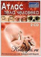 Книга Атлас тела человека