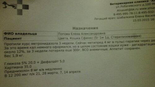 https://img-fotki.yandex.ru/get/4/50951434.19/0_126530_39d644f1_L.jpg