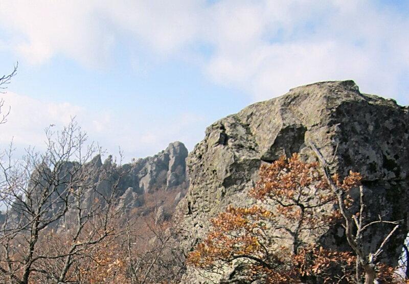 Фотограф Виктор Шалтаев, Индюк, Ноябрь 2011, Фотографии моих друзей