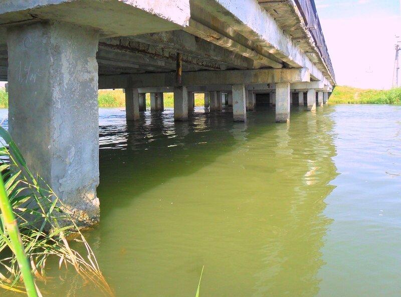 Под мостом, в августе, велопробег, на дорогах Кубани. 2014 го