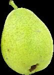 «Fruits_Village_by»  0_8a61b_8e1870a2_S