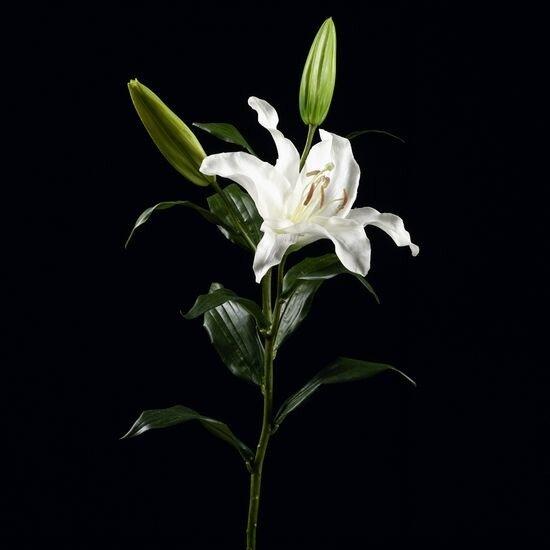 67FA1025_fleur_artificielle_de_Grand_lys_artificiel_Fresca_blanc.jpg