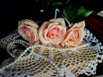 розы для Ниночки...(enstein65.)