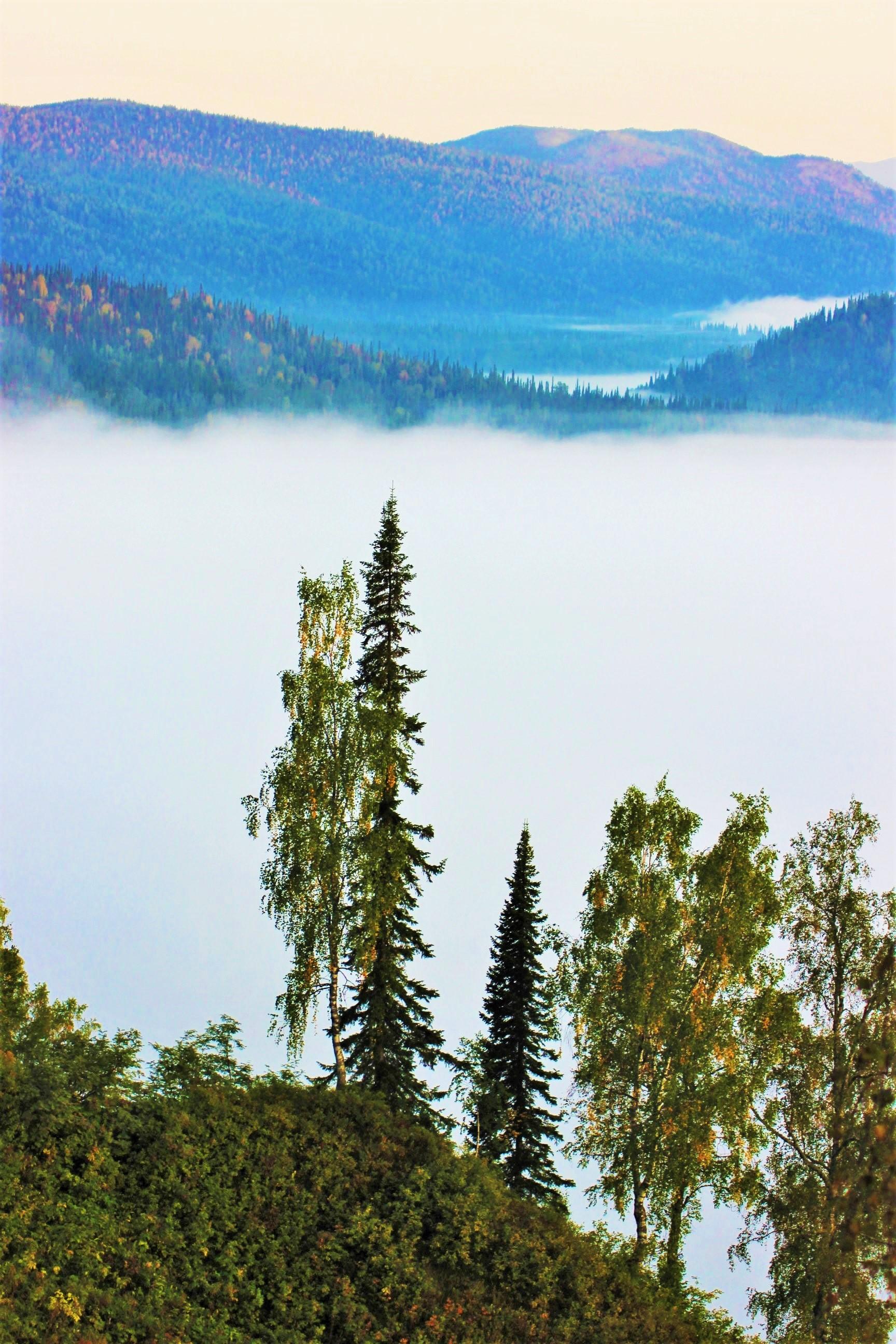 IMG_7824.JPG Пред озером тумана