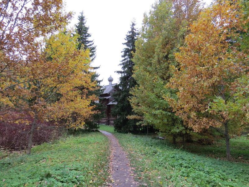 Осенняя тропинка в Витославлицах