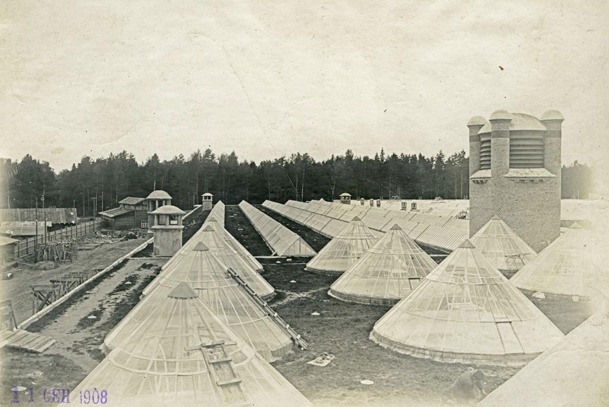 11 сентября 1908