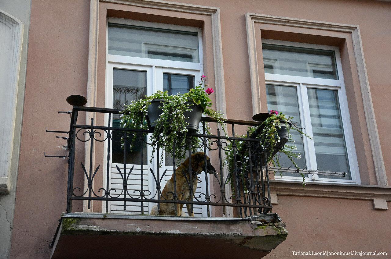 На задворках Вильнюса