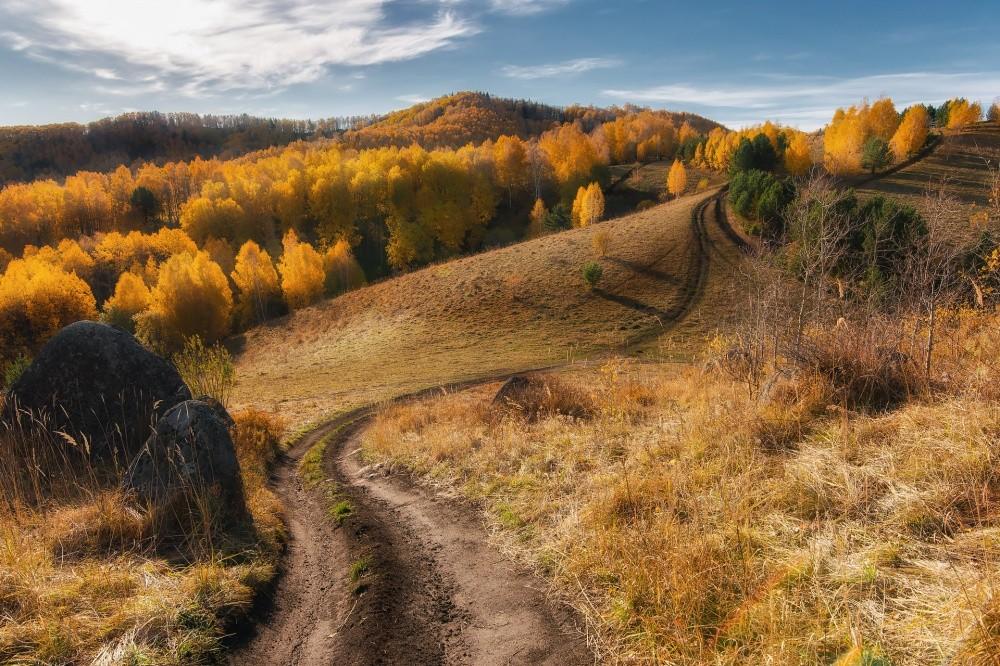 20. Дорога в осень, Россия. (© Павел Силиненко)