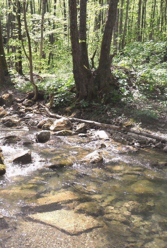 У реки, весна