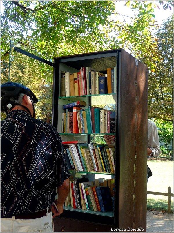 Необычный книжный шкаф в аллее парка.