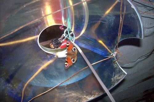 Сибирский фонарь с бабочкой*