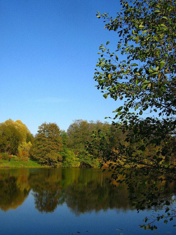 Осенний пейзаж у пруда
