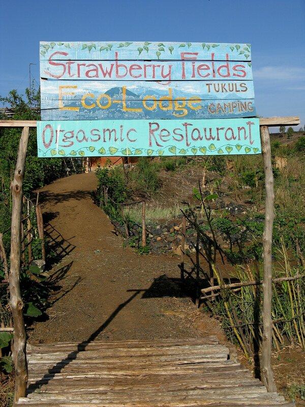 Orgasmic Restaurant