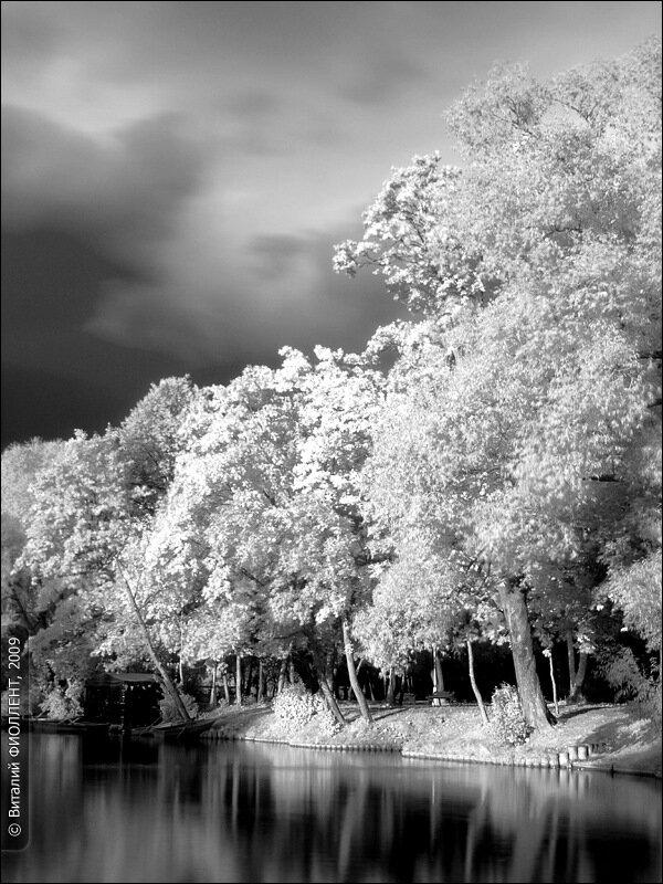 Воронцовские пруды