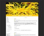 Дизайн для ЖЖ: Солнечные лучи (S2). Дизайны для livejournal. Дизайны для Живого журнала. Оформление ЖЖ. Бесплатные стили. Авторские дизайны для ЖЖ