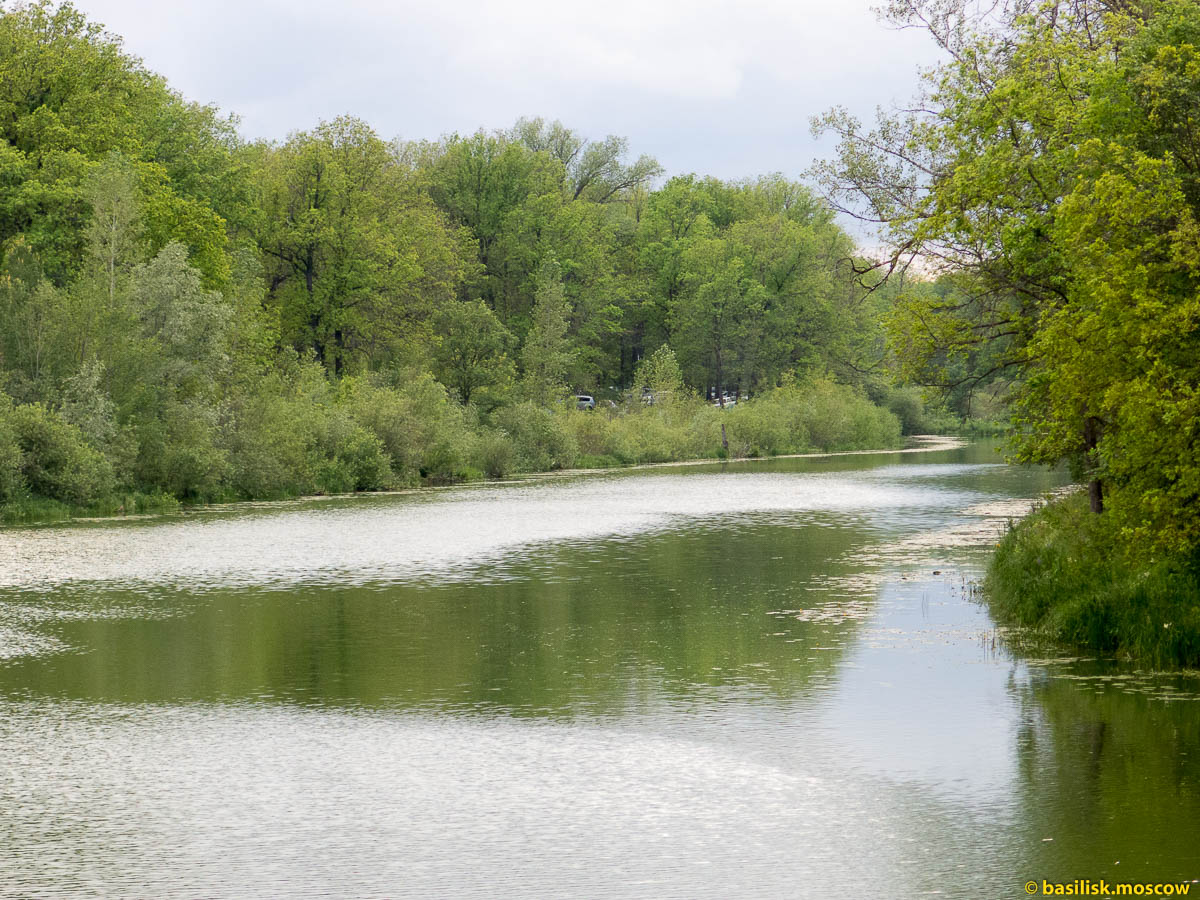На Грушинский. Июль 2015.