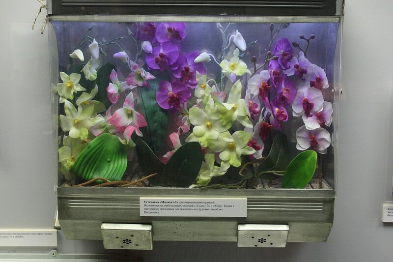 Установка Малахит-2 для выращивания орхидей