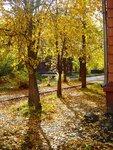 Осень. Старые дома