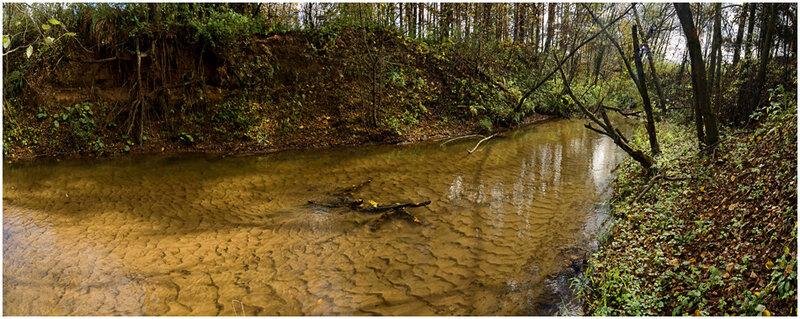Природа. Фотографии осенних видов. Фотограф Кузьмин