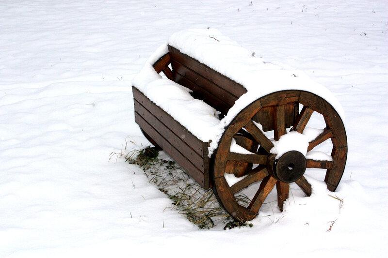 Цветочница под снегом