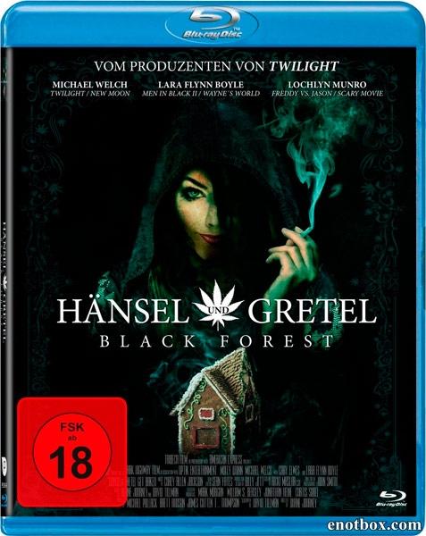 Темный лес: Ганс, Грета и 420-я ведьма / Hansel & Gretel Get Baked (2013/HDRip)