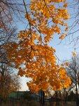 Осень-44.jpg