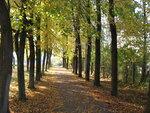 Осень-47.jpg