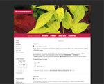 Дизайн для ЖЖ: Зелёное на красном (S2). Дизайны для livejournal. Дизайны для Живого журнала. Оформление ЖЖ. Бесплатные стили. Авторские дизайны для ЖЖ