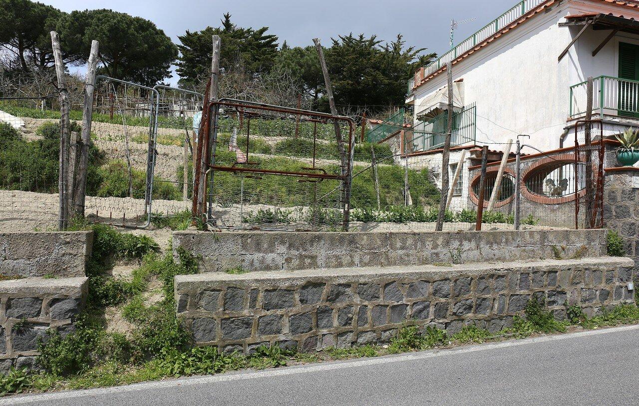 Ischia. Carrara (Serrara)