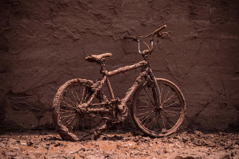 16. В Бенто-Родригес лошади из последних сил пытаются выбраться из обрушившейся на них грязи.