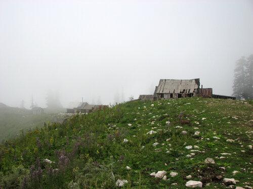 Альпийские луга 2