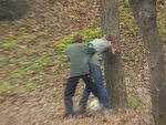 Прибили к дереву