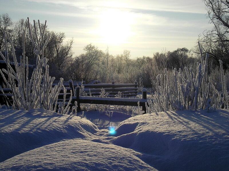Снежные бугры.jpg