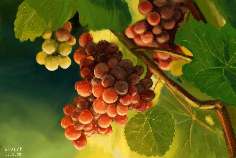 """""""И вот, эта виноградная лоза. была посажена на хорошем поле, у больших вод, так что могла пускать ветви и приносить..."""