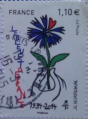 франция цветок 1.10