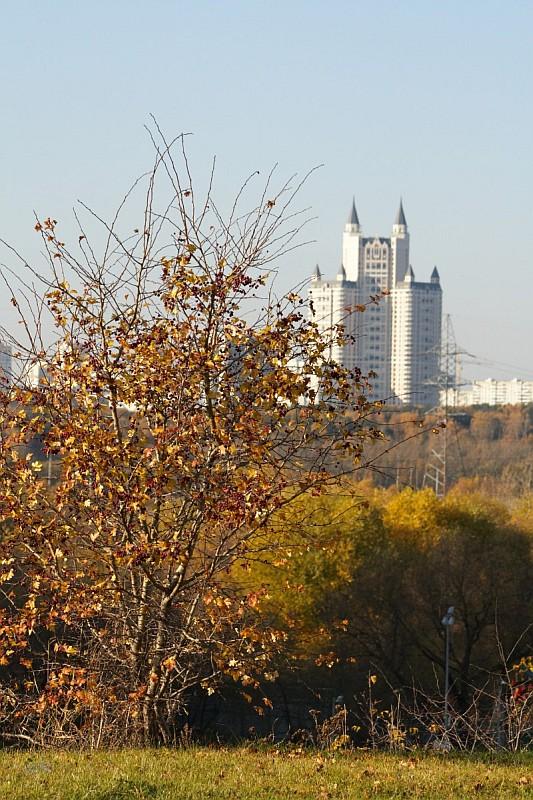 Прогулка МГУ - долина реки Сетунь
