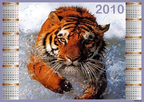 Календарь 2010 - Тигр