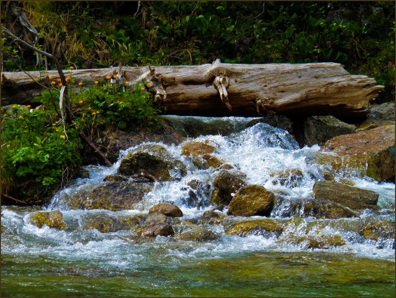 Прохладный ручей