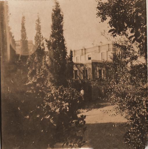 Перспектива одной из аллей парка, ведущей к господскому дому в имении