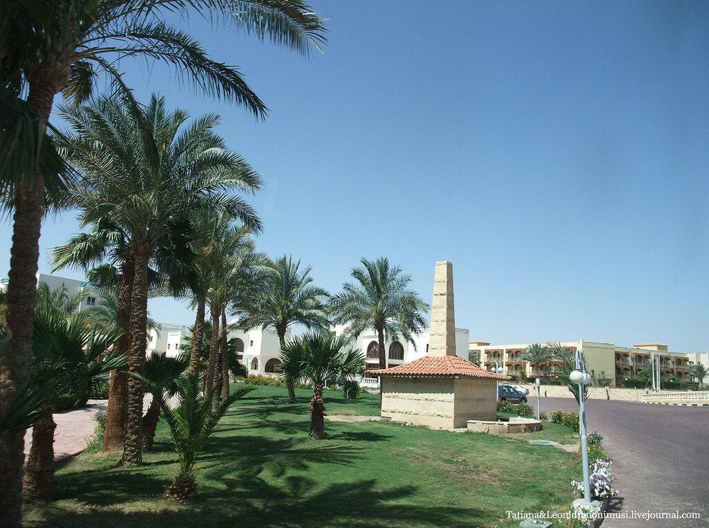 Египетская красота