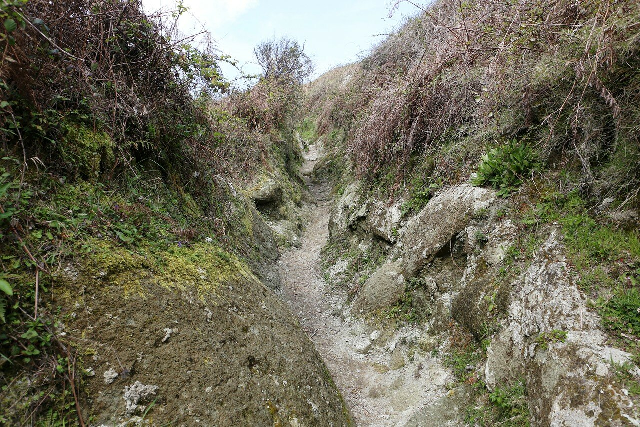 The path to the Monte Epomeo