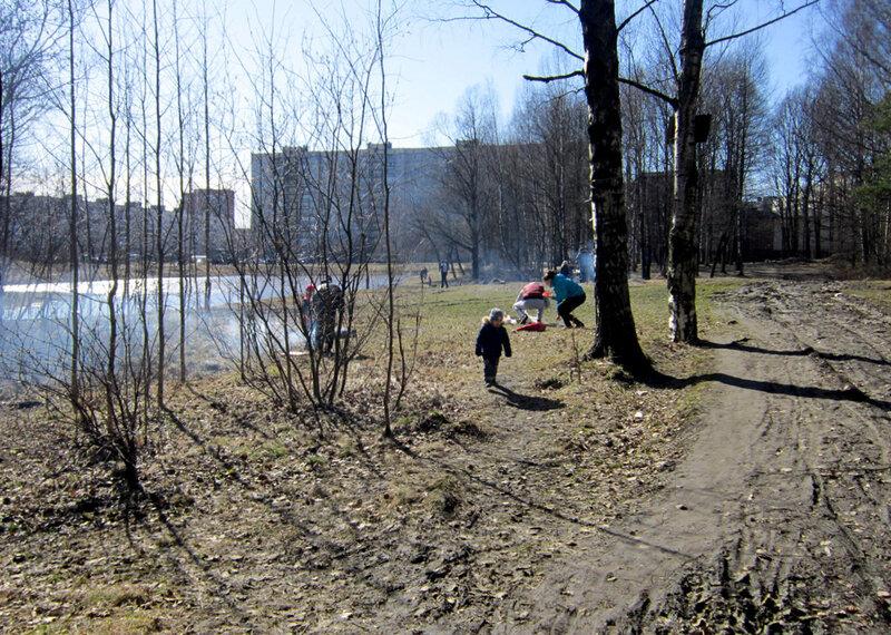 Река Лапка в Петербурге. Фото А.И. Замятина. 11 апреля 2015 года