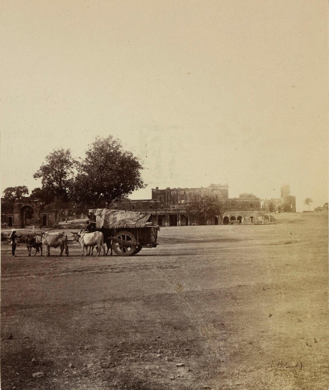 22. Руины Резиденции и Дворцовой стражи. Лакхнау
