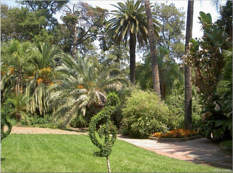 Италия. Сан Ремо. В саду Консерватории.