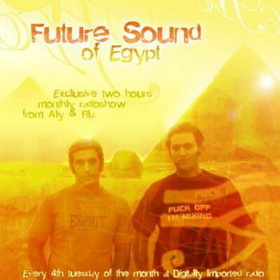 Aly and Fila - Future Sound of Egypt 116 (11-01-2010)