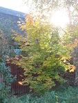 Осень-55.jpg